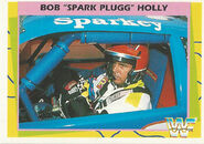 1995 WWF Wrestling Trading Cards (Merlin) Bob Holly 168