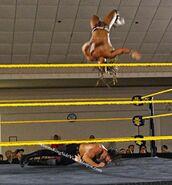 3-14-15 NXT 9