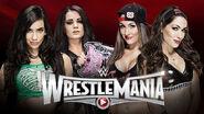 WrestleMania 31 - Divas Tag