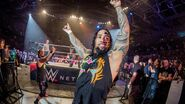 WWE Germany Tour 2016 - Mannheim 7