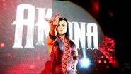 WWE World Tour 2013 - Dublin.19