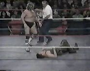 WWF The Wrestling Classic.00005