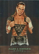 2008 WWE Heritage III Chrome (Topps) (Allen & Ginter) Shawn Michaels 5