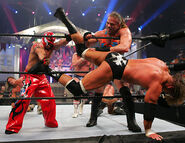 Royal Rumble 2006.4