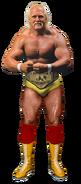 Hulk hogan 86