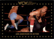 1991 WCW Collectible Trading Cards (Championship Marketing) Arn Anderson 108