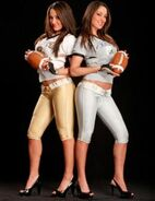 Bella Twins.21
