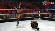 WWE 2K14 Screenshot.113