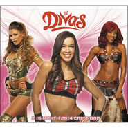 WWE Divas 2014 Wall Calendar