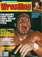 Sports Review Wrestling - April 1981