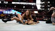 WrestleMania 19.7