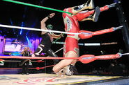 CMLL Martes Arena Mexico (April 26, 2016) 15