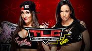 TLC 14 Nikki v AJ