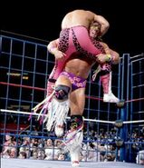 Steel Cage Images.9