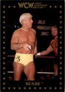 1991 WCW Collectible Trading Cards (Championship Marketing) Ric Flair 39