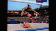 SummerSlam 1992.00024