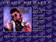 WWF Royal Rumble (JUE) -!-022
