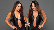 Farewell-to-the-Bella-Twins-wwe-30687114-1284-722