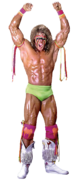 Ultimatewarrior 2 full