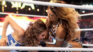 WrestleMania 28.51