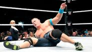 WrestleMania Revenge Tour 2015 - Glasgow.9