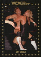 1991 WCW Collectible Trading Cards (Championship Marketing) Sid Vicious 50
