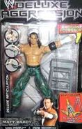 WWE Deluxe Aggression 5 Matt Hardy