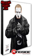 Sting - WWE 16x20 Canvas Print