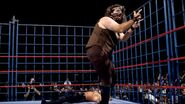 Steel Cage Images.12