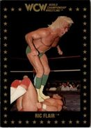 1991 WCW Collectible Trading Cards (Championship Marketing) Ric Flair 12