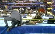 Fall Brawl 1993.00030