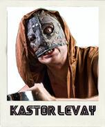 Kastor Levay
