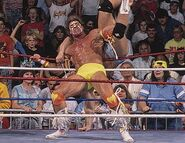 Royal Rumble 1990.6