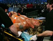 WrestleMania 23.11