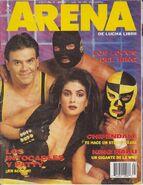 Arena de Lucha Libre 30
