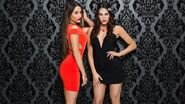 The Bellas Valentine's Day 2015