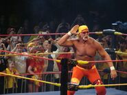 Hulkamania Night 1 8