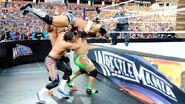 WrestleMania 28.9
