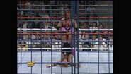 SummerSlam 1994.00034