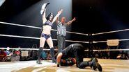 WWE WrestleMania Revenge Tour 2014 - Strasbourg.8