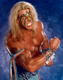 Ultimate Warrior30