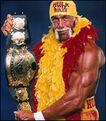 65 Hulk Hogan 6