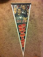 NWO Outsiders Pennant