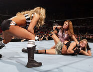 Royal Rumble 2006.40
