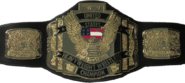 WCW United States Heavyweight Championship