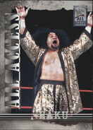 2002 WWF All Access (Fleer) Haku 6
