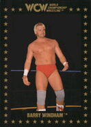 1991 WCW Collectible Trading Cards (Championship Marketing) Barry Windham 90