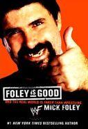 Foley is Good