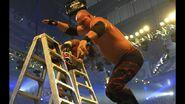 WrestleMania 25.13