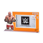Ryback Picture Frame